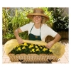 Planto Bio Window Box Hood - Set of 2